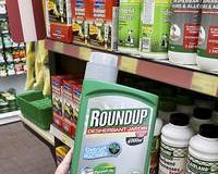 Roundup: Le glyphosate en suspens